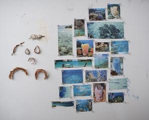 Reef_post1